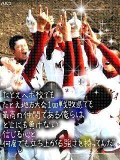 ピクチャ0086.JPG